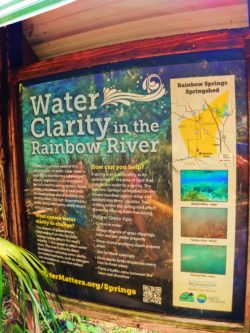 Water Clarity exhibit at Rainbow Springs State Park 1