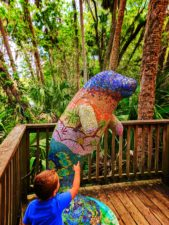 Mosaic Manatee at Blue Spring State Park Daytona Beach 2