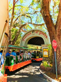 Old Town Trolley entering the Fountain of Youth St Augustine 1