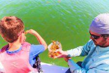 Taylor-Family-Exploring-sargassum-seaweed-St-Augustine-Ecotours-4-225x150.jpg