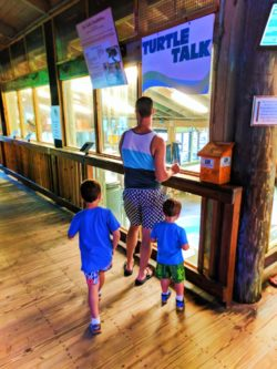 Taylor Family at Ponce Inlet Marine Science Center Sea Turtle ICU 2