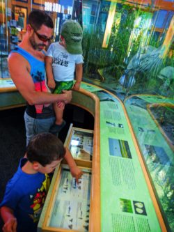 Taylor Family at exhibits GTM Research Reserve St Augustine Florida 1
