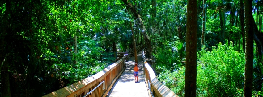 Blue Spring State Park in Florida is perfect for a family vacation full of camping, swimming and photography. In winter months more than 400 manatees will migrate here for the warm water. 2traveldads.com