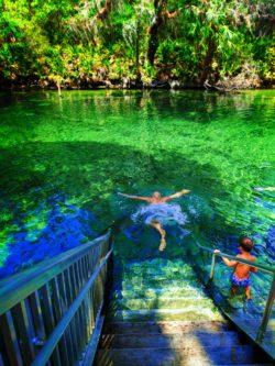 Rob Taylor swimming at Blue Spring State Park Daytona Beach 4