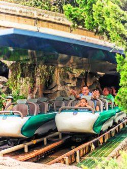 Taylor Family at Matterhorn Bobsleds in Fantasyland Disneyland 2