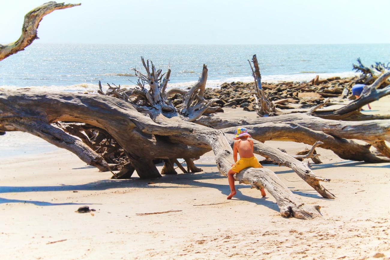 Taylor Family exploring Driftwood Beach Jekyll Island Golden Isles 10