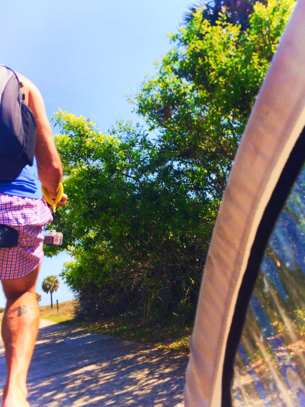 View from kid trailer biking Jekyll Island Golden Isles 1