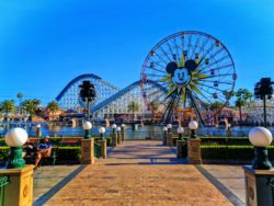 California Screamin and Paradise Pier Disneys California Adventure 2