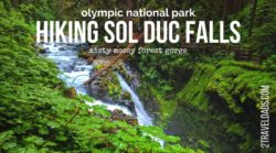 Hiking at Sol Duc Falls in Olympic National Park is a must-see on the Olympic Peninsula of Washington. Rainforest and mossy canyons make this lush destination perfectly PNW. 2traveldads.com