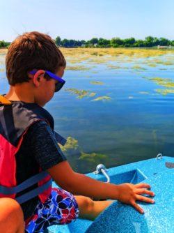 Taylor Family Paddleboating on Like Monona Madison Wisconsin 5