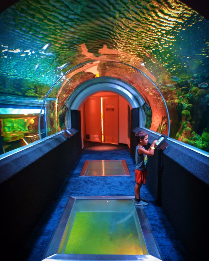 Taylor Family at Discovery World Aquarium Milwaukee Wisconsin 1