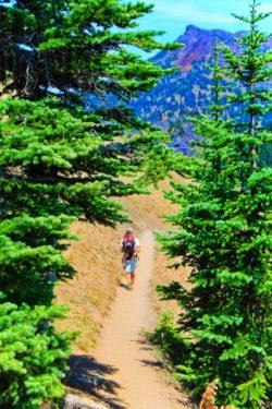 Taylor Family hiking Hurricane Ridge Olympic National Park 1