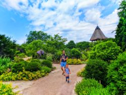 Taylor family at Olbrich Bontanical Gardens Madison Wisconsin 4