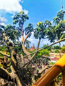 Thunder Mountain from Tarzans Treehouse Adventureland Disneyland 1
