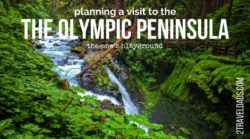 An Olympic Peninsula road trip is one of the best travel experiences in Washington State. With beaches, hiking, small towns and rainforests, it's perfect for any family or visitor.