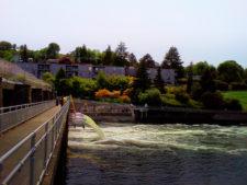 Ballard-Locks-Seattle-1-225x169.jpg