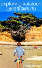 Between camping at Kalaloch and exploring the beaches and rainforest of Olympic National Park, the Kalaloch area is a diverse and beautiful area in the most remote part of the Olympic Peninsula. 2traveldads.com