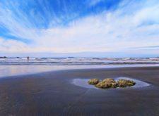 Sandy stretch at Ruby Beach Olympic National Park 2