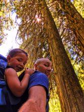 Taylor Family hiking Grove of the Patriarchs Mt Rainier National Park 2
