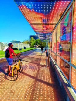 Taylor Family riding Ofo Bicycles at Olympic Sculpture Park Seattle 4