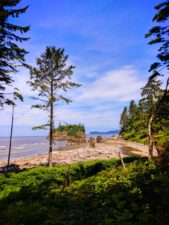 View of Ruby Beach Olympic National Park 1