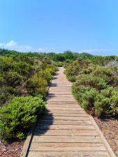 Dunes Boardwalk at Oso Flaco Lake Nature Preserve Nipomo 2