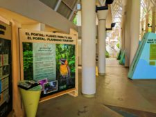El Portal Visitors Center Rainforest El Yunque National Forest Puerto Rico 2