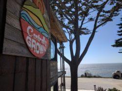 Dining in Cambria California 1