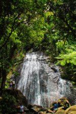 La Coca Falls Rainforest El Yunque National Forest Puerto Rico 2