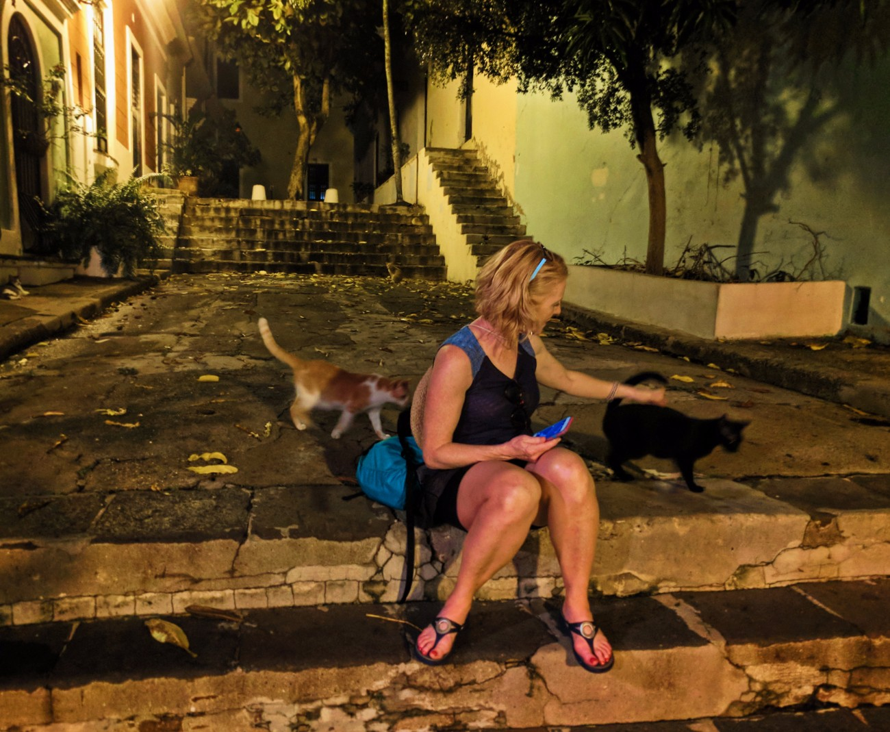 Maureen with Cats on Callejon Hospital in Old San Juan Puerto Rico at night 1