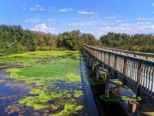 Oso Flaco Lake Nature Preserve Nipomo 2