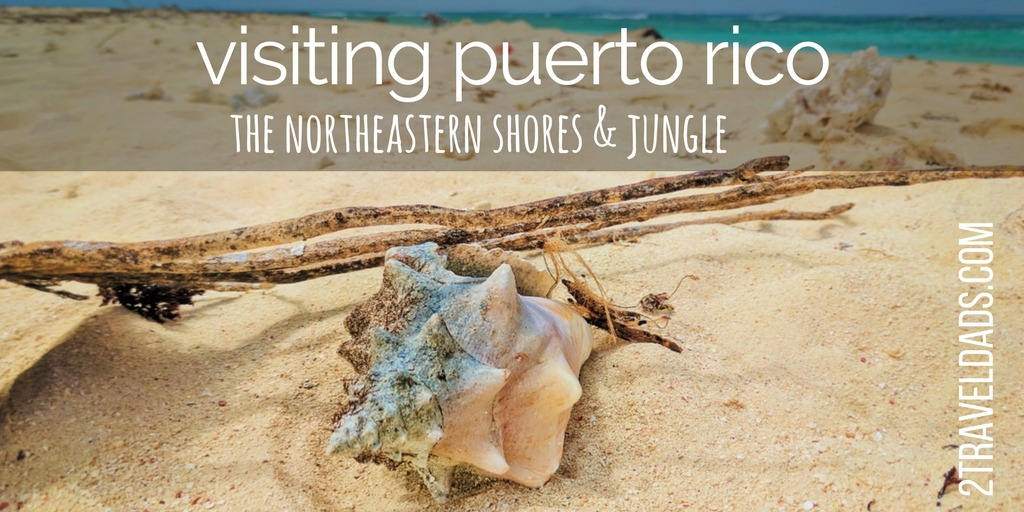 To visit Puerto Rico you just need to pick a part of it and have fun. Northeastern Puerto Rico is home to the rainforest, biolumiscent kayaking, tropical beaches and more. 2traveldads.com