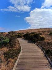 Boardwalk at Fiscalini Ranch Reserve Cambria California Central Coast 7