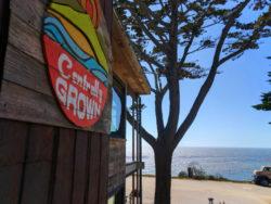 Centrally Grown Restaurant Cambria Central Coast 1