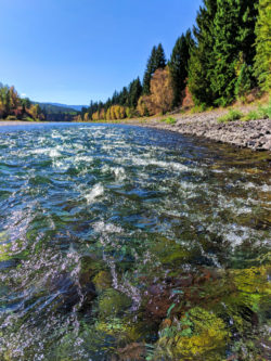 Fall Colors Flathead river float trip Glacier Guides Montana Raft Glacier National Park 3