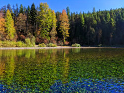 Fall Colors Flathead river float trip Glacier Guides Montana Raft Glacier National Park 4