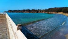 Fishing Pier at Hearst San Simeon State Park 2