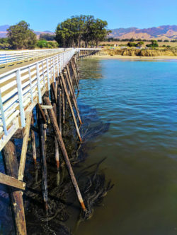 Fishing Pier at Hearst San Simeon State Park 3