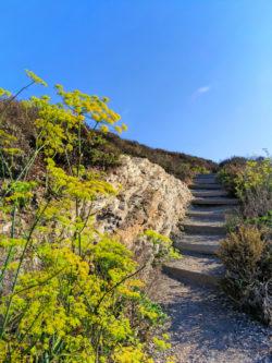 Hiking trail at Montana de Oro State Park San Luis Obispo 1
