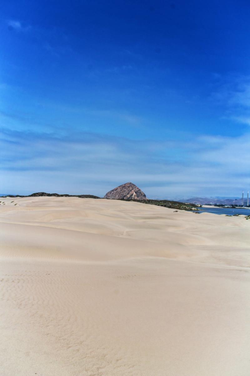 Sand Dunes in Morro Bay San Luis Obispo 3