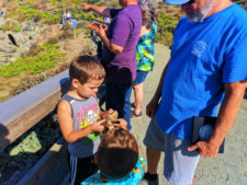 Taylor Family at Elephant Seal colony at Hearst San Simeon State Park 3