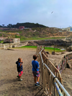 Taylor Family at Sutro Baths GGNRA San Francisco 5