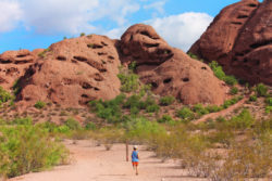 Taylor Family hiking at Hole in the Rock at Papago Park Phoenix Tempe 10