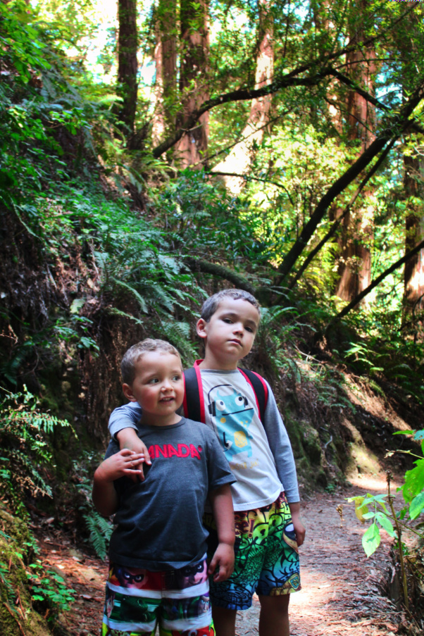 Taylor family hiking in Redwoods Muir Woods National Monument 3