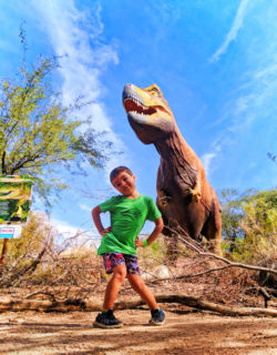 Taylor family with Dinosaur exhibit Phoenix Zoo Tempe 1