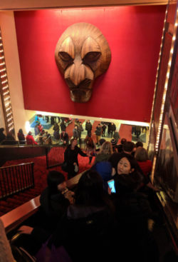 Taylor Family at Lion King on Broadway Minskoff Theater
