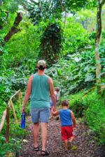 Taylor Family hiking at Waimea Valley North Shore Oahu 9