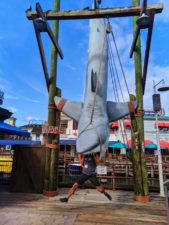 Rob Taylor eaten by Jaws Universal Studios Florida Orlando 2