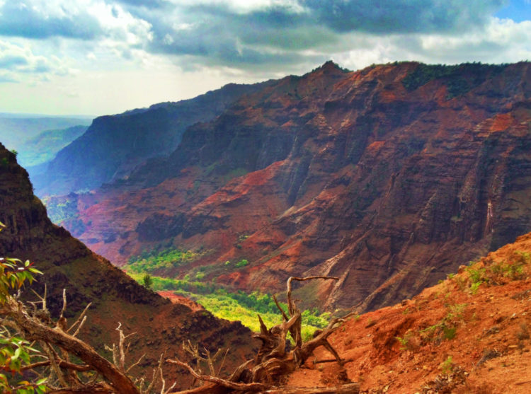 2DadsWithBaggage Waimea Canyon view Kauai Hawaii 1