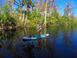 Paddleboarding Blue Spring State Park Paddleboard Orlando 4